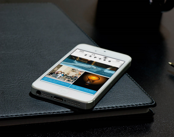 Zap&Go Intranet Phone